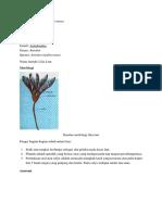 Dokumen (8).docx