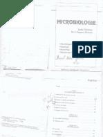 Microbiologie.lucia.debeleac