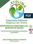 Presentación Ecosistemas Estratégicos de Ibagué