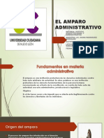 El Amparo Administrativoact 8 Leticia Hdz