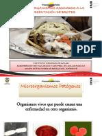 Agentes PATOGENOS.pdf