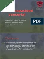 Discapacidad Sensorial