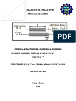 Informe de Física II n1