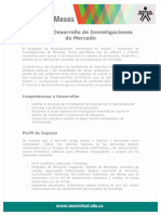 Diseno Desarrollo Investigaciones Mercados