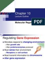 10 _Molecular Regulation