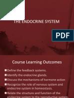 1 Endocrine System