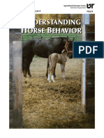 UnderstandingHorseBehavior.pdf