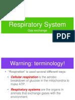 Respiratory System Gas Exchange