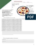 guia-2-sistema-circulatorio1.doc