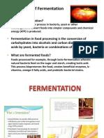 Fermentation Lecture 1