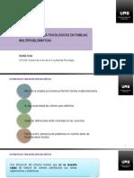 V4_7-PAP-familias-multiproblematicas.pdf