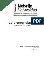 2009-bv-10-01aurrecoechea-pdf.pdf