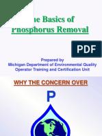 Wrd Ot Basics of Phosphorus Removal 445207 7