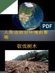 人类的活动对环境的影响
