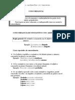 Reglas de concordancia del español