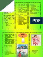 LEAFLET PREMATUR.docx