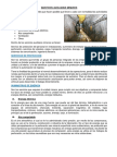 CUADERNO SAM 2.0.docx