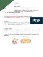 ESTRUCTURA DE LOS SERES VIVOS.docx