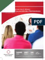 Sistema Evaluacion Profesorado