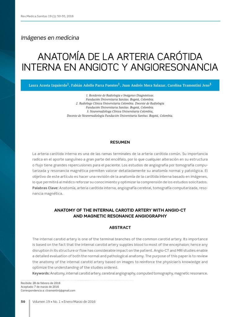 Anatomia de La Arteria Carotida Interna en Angiotc y Angioresonancia