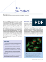 Confocal 1