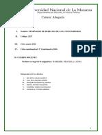 Programa Seminario Derecho de los Consumidores - UNLAM