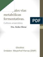 Principales Vías Metabólicas Fermentativas (Cultivos Anaerobios) 18I