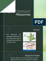 Ribosomas.pptx