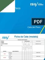 Cata del Pisco.pptx