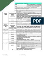 Resumen Terapia Auditiva