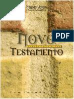 Novo Testamento - Versão Fácil de Ler