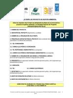 Formato Perfil Gestion_2016.doc