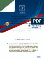 001.expo procesos 08.pptx