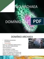 Biologia -DOMI¦üNIO ARCHAEA.pptx