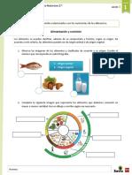 Ampliacion Alimentación y Nutrición