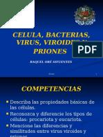 Primera Clase 2010