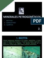 IV. Minerales Petrogenéticos 2