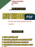 Acidos Nucleicos I Ok-1
