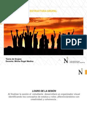 Estructura Grupal Estado Social Sociedad