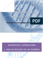 Met de Nucleotidos-1