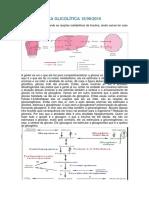 Continuação via Glicolítica 16