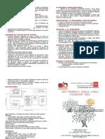 folleto present cole2018.doc