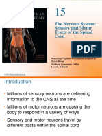 Sensory and Motor Tracts of Spinal Cord.pdf