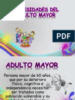 NECESIDADES ADULTO MAYOR.pptx
