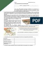 Guía vivienda griega.docx