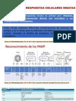 Respuestas Innatas Del Hospedador EXPO Grupo2 Micro
