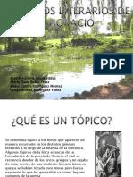 TOPICOS LITERARIOS DIAPO.