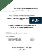 Proyecto 2017 Extracción Pectina