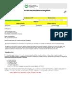 ntp_323 Metabolismo.pdf