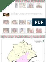 14 Mapas Entidades indigenas 2015